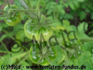 jab gruene frucht