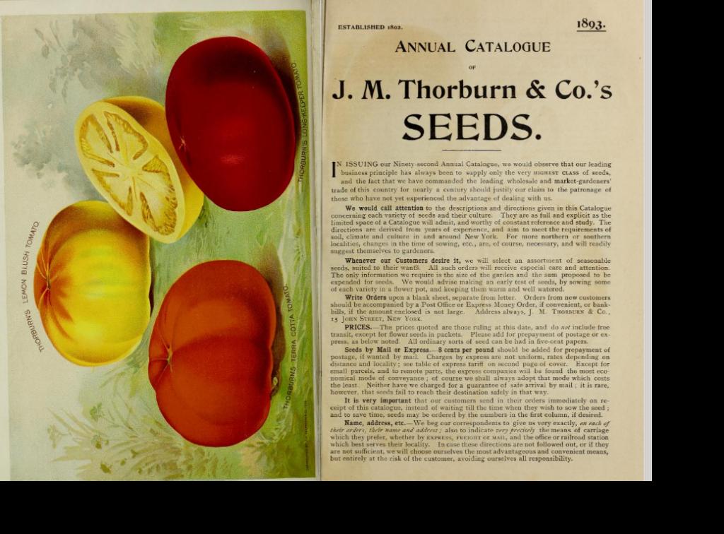 Doppelseite Thorburn Katalog 1893